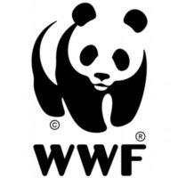 (日本語) 公益財団法人世界自然保護基金ジャパン(WWFジャパン)